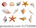 Hand drawn shellfish starfish on white background. 41756988