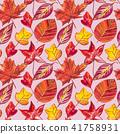 잎, 가을, 단풍 41758931