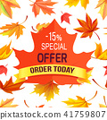 Special Offer - 15 Order Today Promo Advertisement 41759807