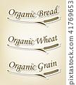 有机小麦和字母符号 41769653