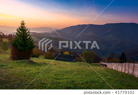 wooden fence on a grassy hillside at autumn dawn 41770102