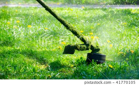 grass cutting in the garden 41770105