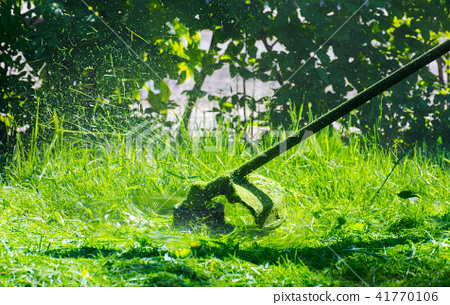 trimmer head cutting grass to small pieces 41770106