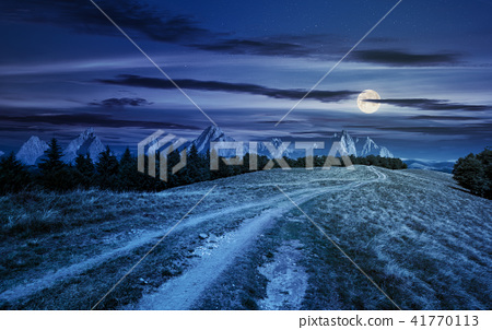 road through forested mountain ridge at night 41770113