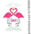 火烈鳥 愛 愛情 41780895
