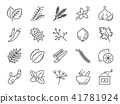 Spices and herbs icon set. 41781924