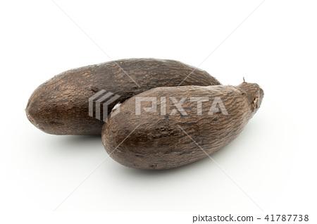 Yanpi sweet potato: yampi 41787738