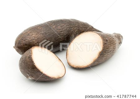 Yanpi sweet potato: yampi 41787744