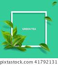 ชา,สีเขียว,เขียว 41792131