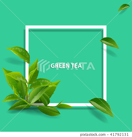 green tea leaves in motion on green background. 41792131
