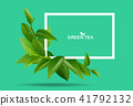 green tea leaves in motion on green background. 41792132