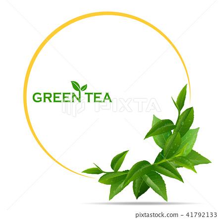 Green Tea Leaves In Motion On White Background Stock Illustration 41792133 Pixta