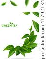 ชา,สีเขียว,เขียว 41792134
