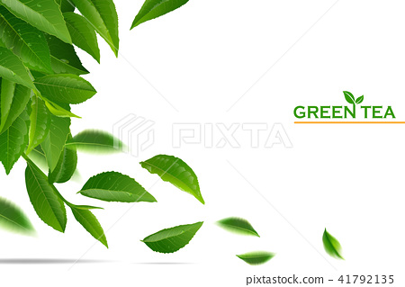 green tea leaves in motion on white background. 41792135
