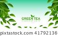 ชา,สีเขียว,เขียว 41792136