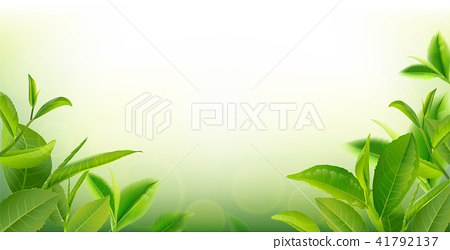 green tea leaves in motion on sky background. 41792137
