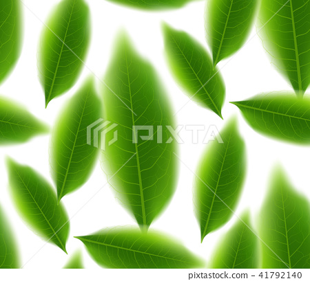 Green tea leaves seamless vector nature background 41792140