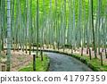 Bamboo Park Beppu Park 41797359