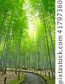Bamboo Park Beppu Park 41797360