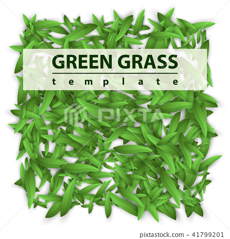 Square template grass. Green leaf. 41799201