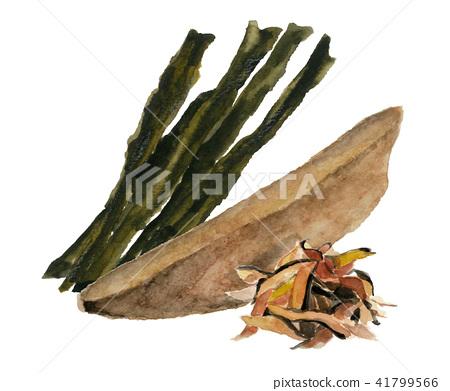 kelp, konbu, devil's apron 41799566