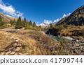 Peak of Care Alto - Adamello Trento Italy 41799744