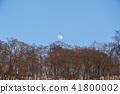 sky, nature, natural 41800002