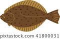 물고기, 생선, 벡터 41800031