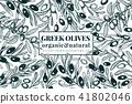 Olive tree banner template. Vector vintage illustration. Hand drawn engraved style frame. Design for 41802046