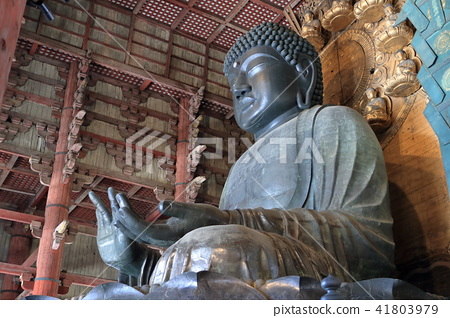 Buddha of Nara 41803979