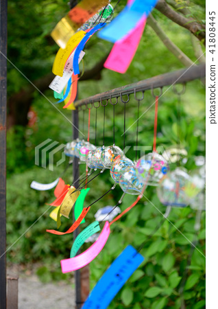 풍경 여름 초여름 축제 41808445