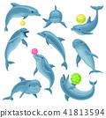 jump dolphin vector 41813594