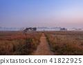 仁川,Sorae,生態公園 41822925