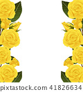Yellow Rose Flower Border 41826634
