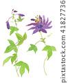 ดอกไม้,ไม้,โรงงาน 41827736