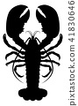 Lobster Silhouette 41830646