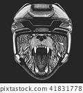 animal, wild, hockey 41831778