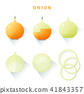 Set of fresh onions 41843357
