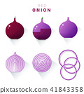 Set of fresh red onions 41843358