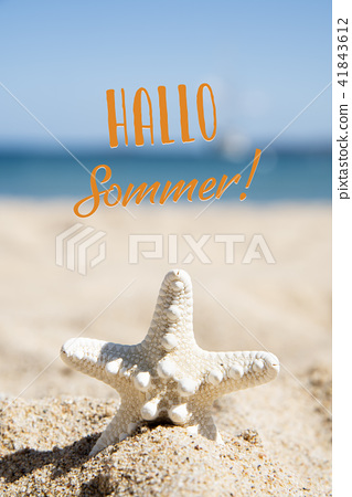 starfish and text hello summer in german 41843612