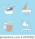 Vector - Pet's daily life, various companion animals vector illustration 008 41849982