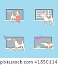 Vector - Pet's daily life, various companion animals vector illustration 013 41850114