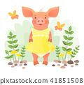 Piggy in dress 41851508