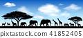 African animals, savanna 41852405