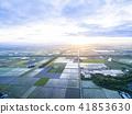 清晨稻田圖像(航空攝影) 41853630
