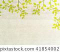 leaf 41854002
