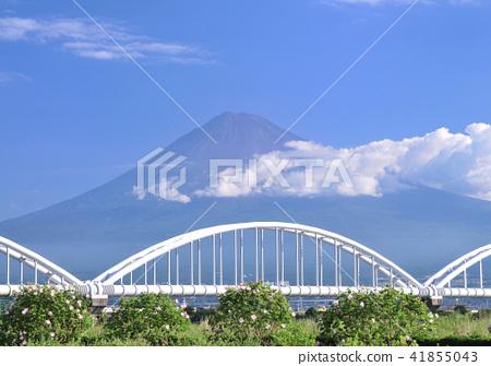 富士山 世界遺產 晴朗 41855043