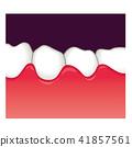 牙齒 齒輪 口香糖 41857561