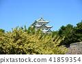 名古屋市风景·秋天的名古屋城堡 41859354