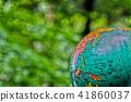 森林地球 41860037